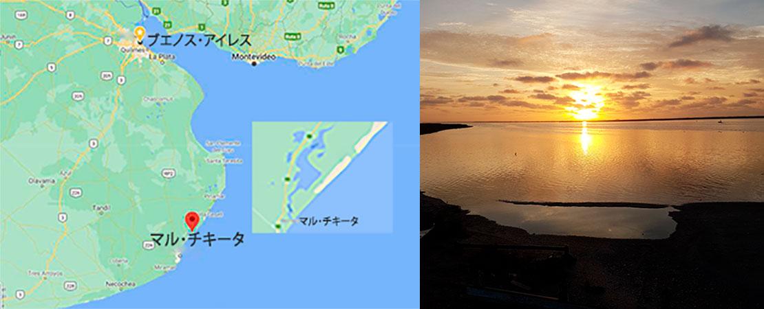 入り江におけるヒラメ